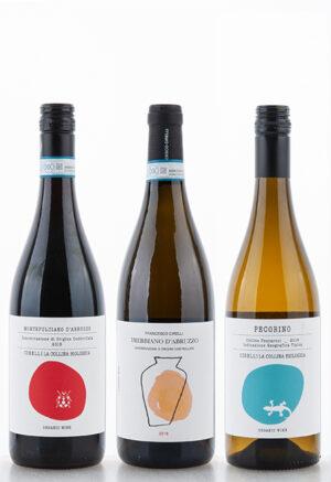 WRINT Paket Cirelli Abruzzen 1 300x437 - Lebendige Weine