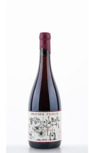 Phaunus Palhete Amphora 2018 Aphros Wine