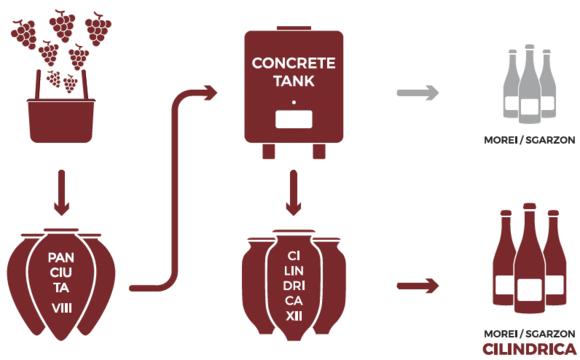 foradori amphorae vinification cilindrica morei