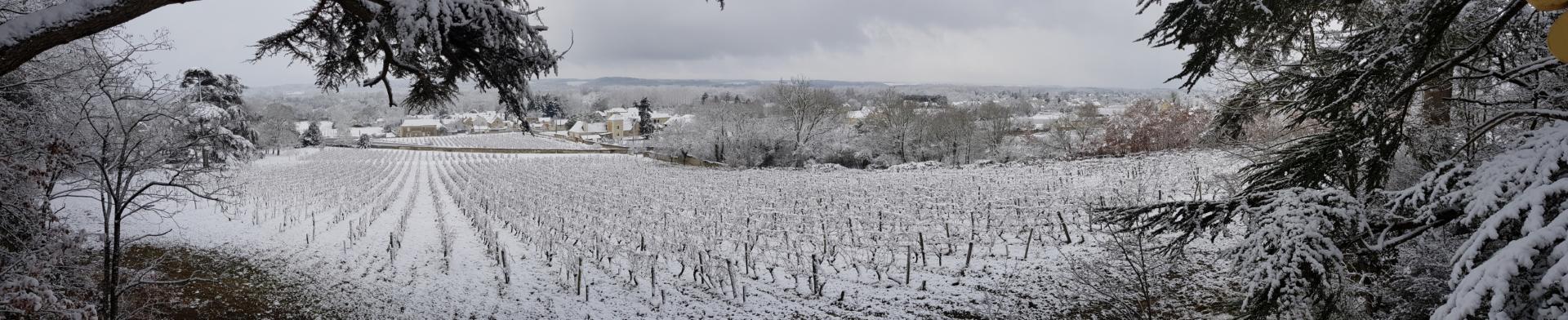 de coulaine snow vineyards panorama