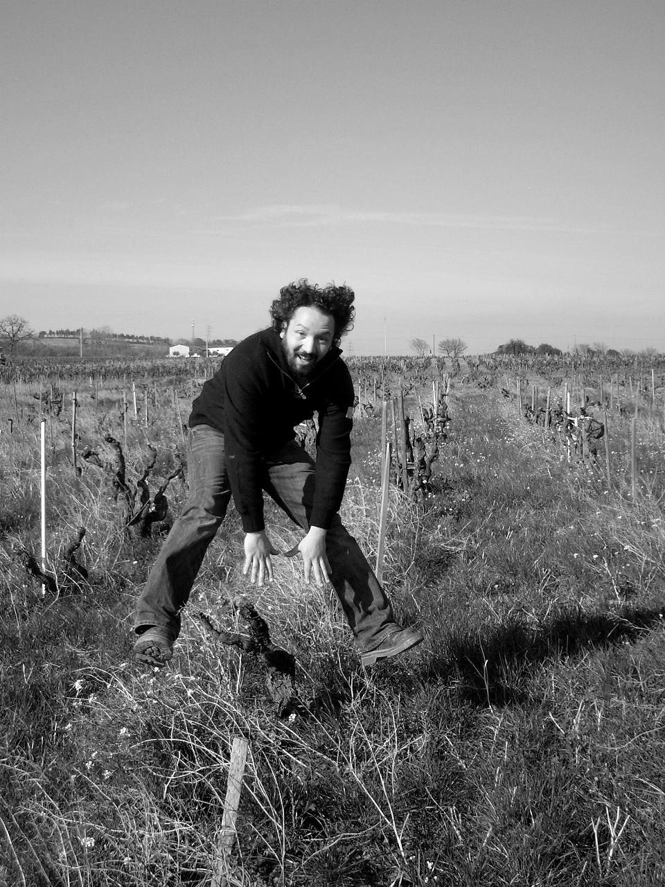 domaine de villeneuve vineyard