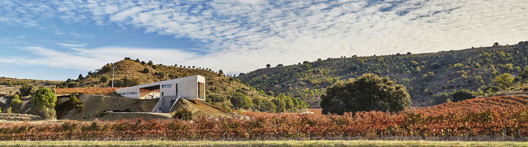 valdemonjas winery landscape resized