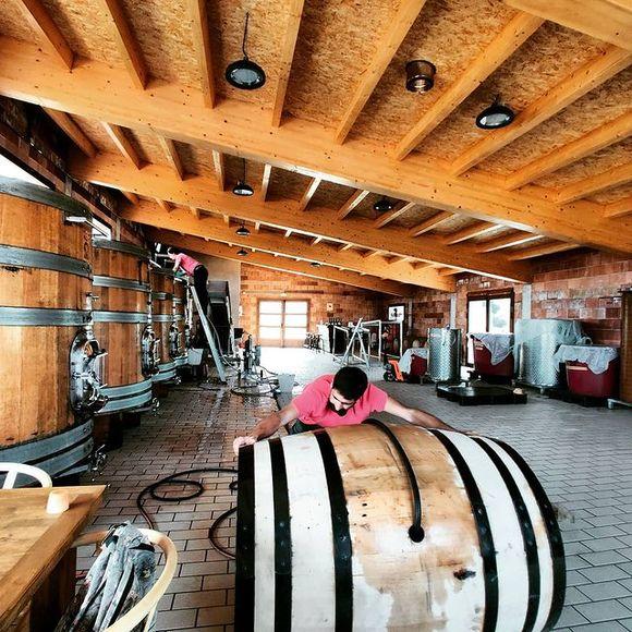 Neuer Weinkeller bei Nin Ortiz