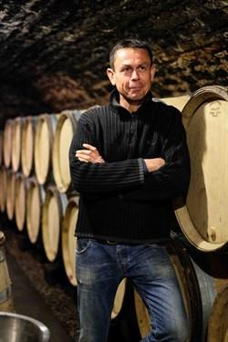 thomas morey in the cellar