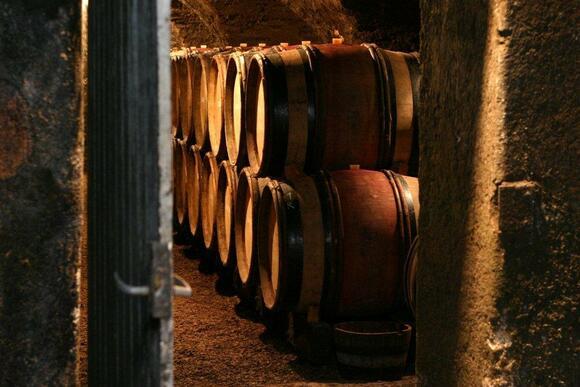 in the cellar of chandon de briailles