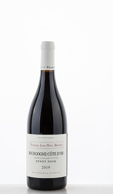 Bourgogne Côte d'Or Pinot Noir AOC 2019